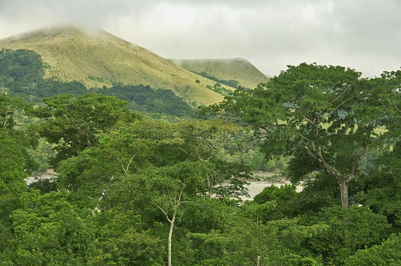 Forest and mountain tops with cloud cover in Lope National Park.