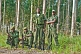 Image of A squad of Angolan soldiers with assault rifles in eucalyptus plantation.