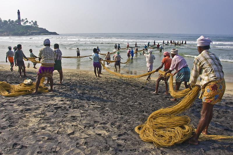 Indian fishermen wearing lunghis haul in their nets from the beach.