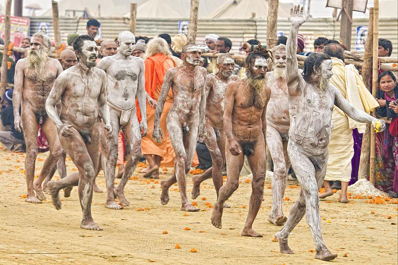 Naked Naga Holy Men return in procession from holy river ritual bathing.