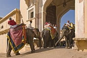 Elephants enter the Suraj Pol, the main entrance to the Amber Fort and the Amber Palace.