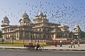 Pigeons fly over the Albert Hall in Ram Niwas Gardens, which now contains the Central Museum and Art Gallery.