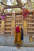 A Buddhist pilgrim pauses for prayer and comtemplation before the Tree of Enlightenment at the Mahabodhi Temple.