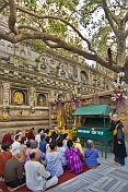 Japanese pilgrims receive guidance and instruction under the Tree of Enlightenment at the Mahabodhi Temple.