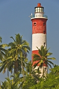 Vizhinjam Lighthouse and coconut palm trees against a deep tropical blue sky.
