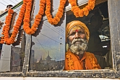 Elderly Hindu Holy Man Looks From Decorated Jeep Window