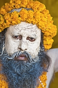Juna Akhara Naga with Sacred Ash Face And Marigold Flower Garlands