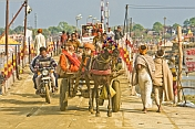 Horse And Cart With Pilgrims Cross Ganges River Pontoon Bridge