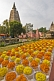 Image of Yellow and orange flowers laid out before the Mahabodhi Temple.