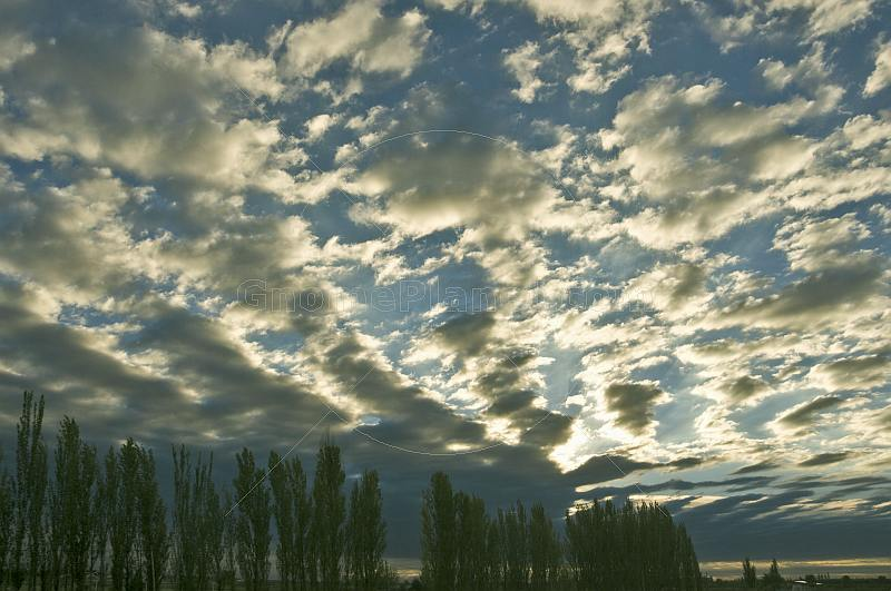 Clouds and trees at sunset.