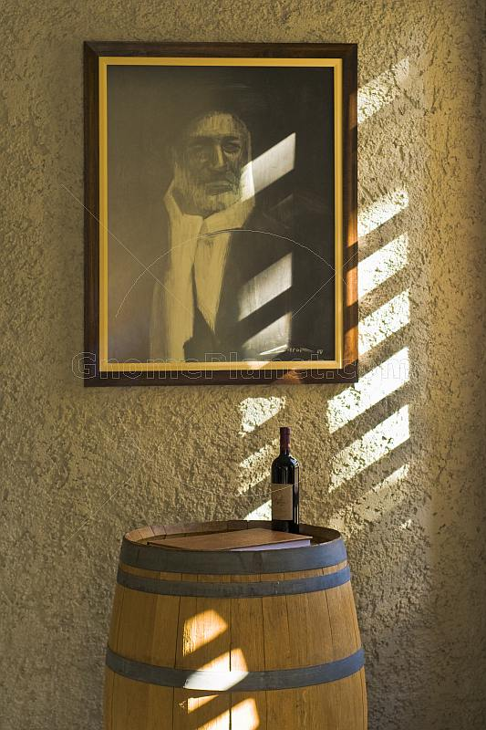 Portrait of Pietro Marini above barrel and bottle at the Bodega El Transito winery.