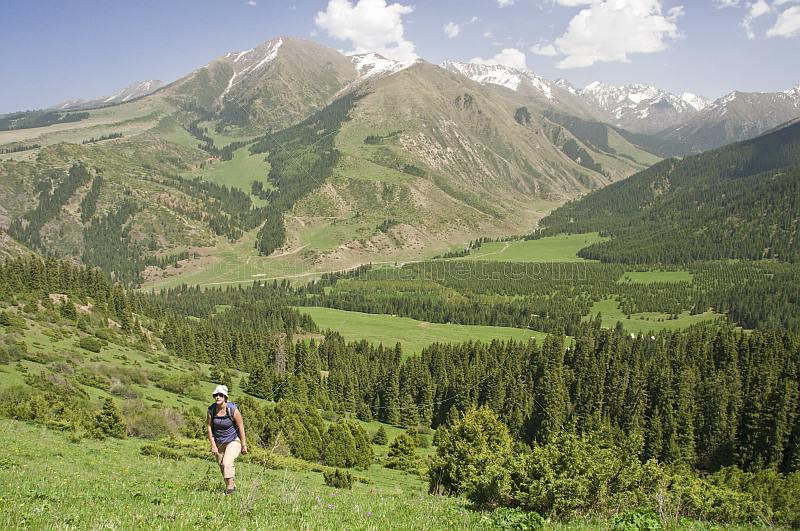 A trekker climbs through forest and green meadows to the snow-capped mountains of the Sarycat Ertas Nature Reserve.