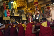 Young monks at a service in the Gandan Muntsaglan Khiid monastery.