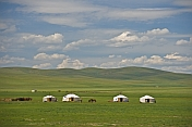 A camp of yurts on the Mongolian grassland.