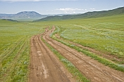 Un-surfaced dirt roads cross the Mongolian grassland.
