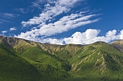 Forested mountains of the Altai Republic.