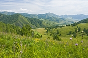 Russia Asiatic, Respublika Altay, Cherga. Mountains, flower-filled meadows, and farmland of the Altai Republic.