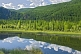 Forested mountains and river of the Altai Republic.