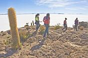 visitors on the Isla Pescado view the Uyuni Salt Flats.