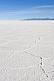 Naturally occurring salt ridge patterns on the Uyuni Salt Flats.