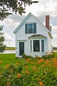 Traditional white washed weatherboard house with garden of orange flowers.