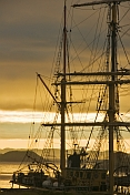 Masts and rigging of the barque 'Picton Castle' against a cloudy sky at dawn.