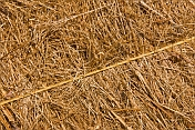 Detail of a bale of meadow hay with yellow baler twine crossing diagonally.