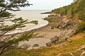 Fir trees and a rocky coastline hug the Bay of Fundy in the Cape Split Provincial Park Reserve.