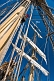 Image of Rope masts and rigging of the tallship 'Picton Castle'.