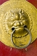 Gold-colored lion door handle at the Great Buddha Temple.