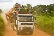 A logging truck with passengers on the roof drives along a dusty jungle road.