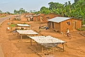 Mud-brick houses with stalls along the main road selling dried manioc and cassava root (Manihot esculenta).