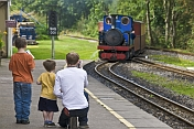 Father and 2 sons photograph approaching steam train at Kirklees Light Railway at Clayton West.